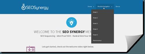 seo synergy members area