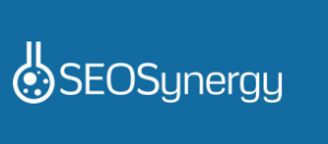 seo synergy review
