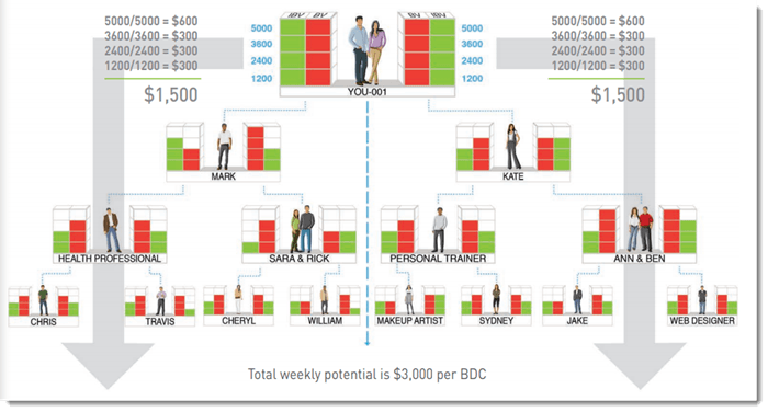 Market America Income System