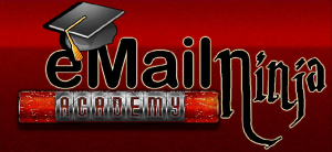Email Ninja Academy Logo