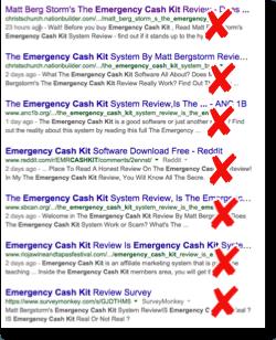 eck fake reviews