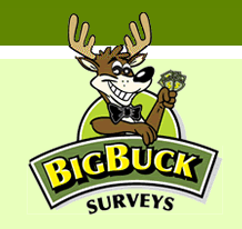 Big Buck Surveys