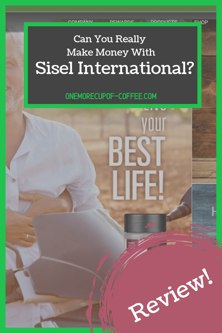 """screenshot of sisel international website with title text """"can you really make money with sisel international"""""""