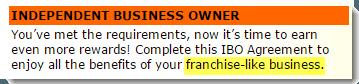 Franchise-like Business