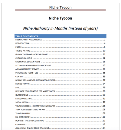 niche tycoon pdf preview