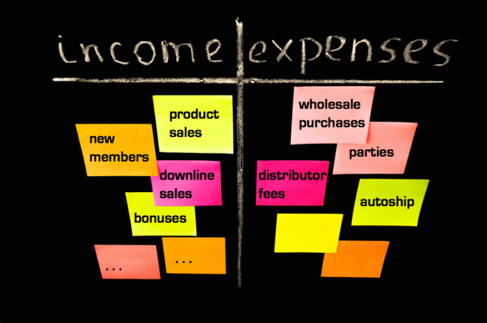 income expenses mlm