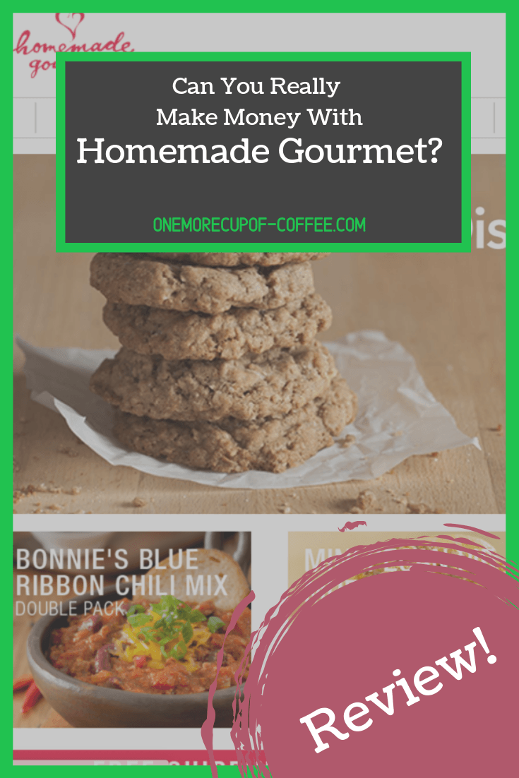 "homemade gourmet web page screenshot with text title, ""can you really make money with homemade gourmet?"""