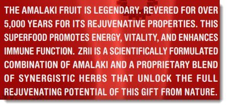 Amalaki Fruit Hype