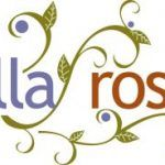 Are Hair Accessories From Lilla Rose Worth Selling?