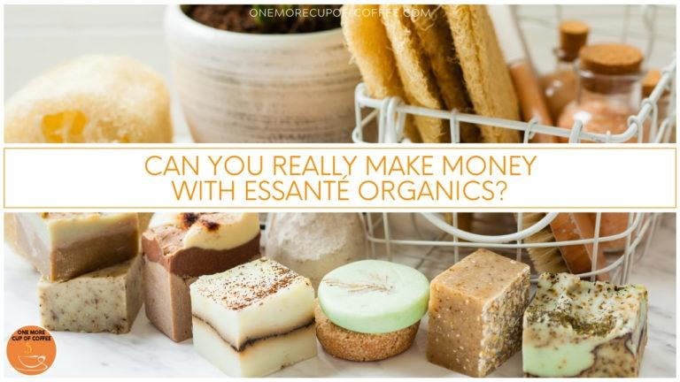 Can You Really Make Money With Essanté Organics featured image