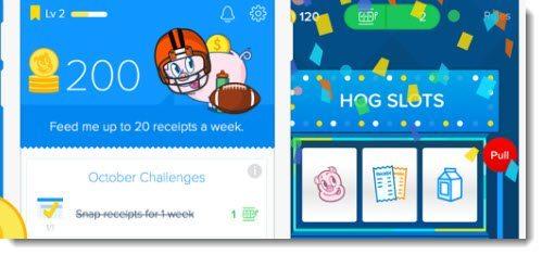 Make Money With Receipt Hog