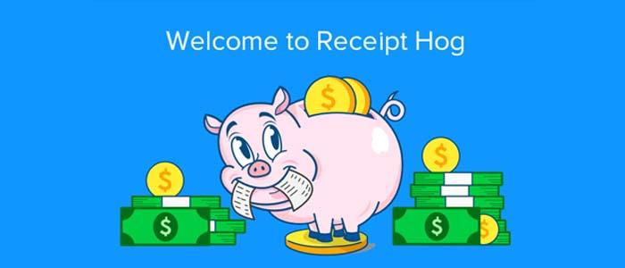 Make Money Receipt Hog