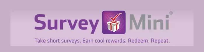 Make Money SurveyMini