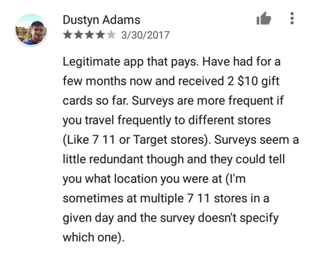 SurveyMini Review 1