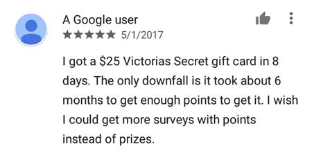 SurveyMini Review 2