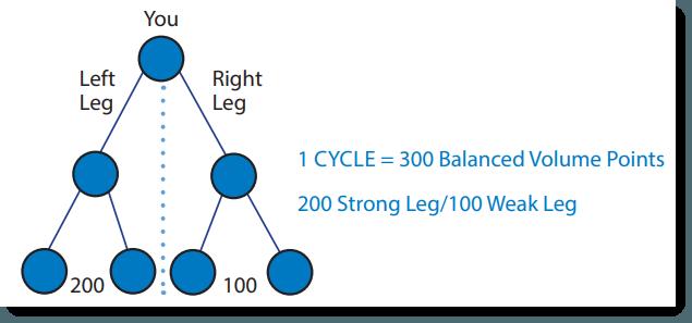 Binary Income Model