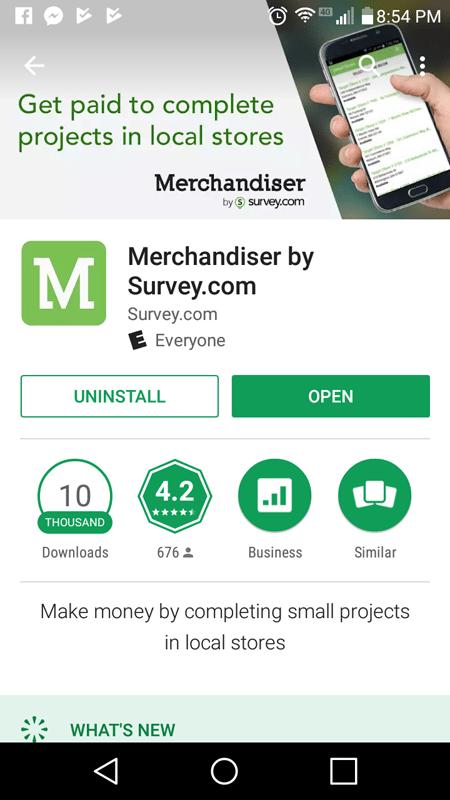 Merchandiser Basic Info