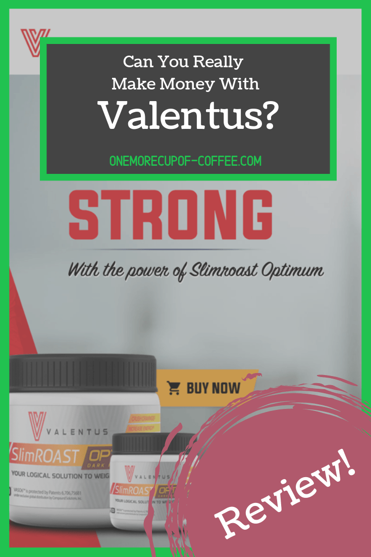 Can You Really Make Money With Valentus