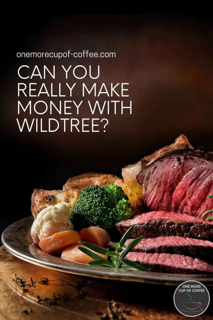 """closeup image of a nicely plated roast beef and vegetables; with text overlay """"Can You Really Make Money With Wildtree?"""""""
