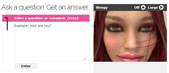 Make Money With Weegy
