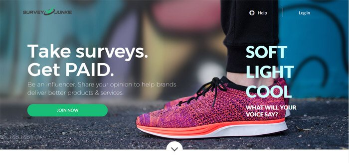 Make Money Survey Junkie