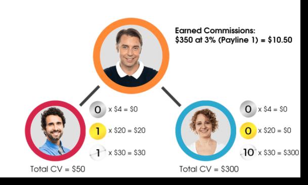 Basic Compensation Plan