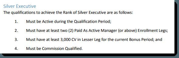 Silver Executive