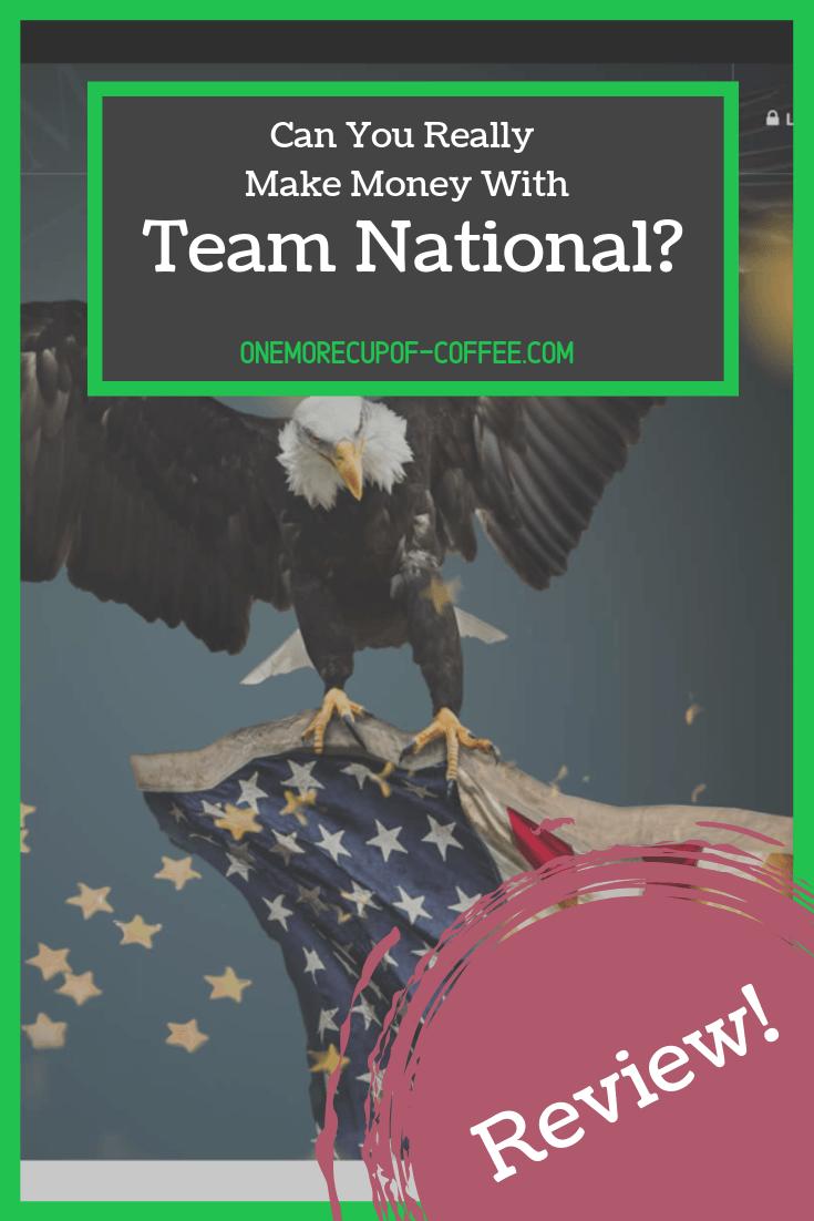 make money team national
