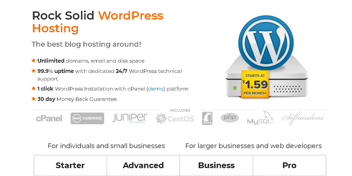 WordPress Hosting from Big Rock for $1.59 Per Month