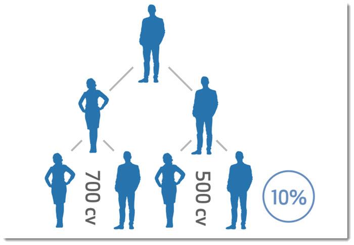 Binary Model for Team Building