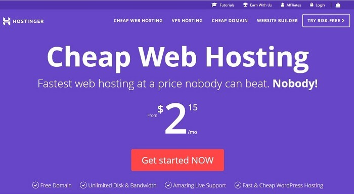 Hostinger Website Hosting Review