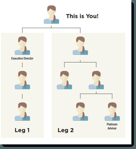 Leg Structure
