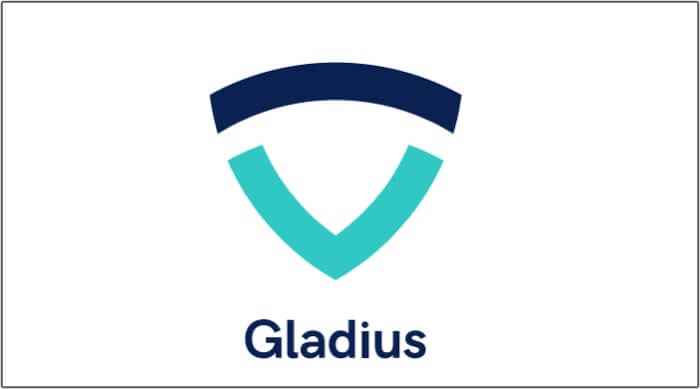 gladius ico review