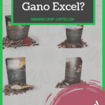 """screenshot of the gano excel website with text overlay that says, """"can you really make money with gano excel?"""""""