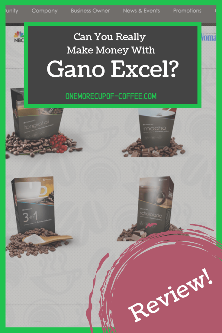 "screenshot of the gano excel website with text overlay that says, ""can you really make money with gano excel?"""