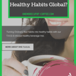 """screenshot of the healthy habits global website with text title that says, """"can you really make money with healthy habits global?"""""""