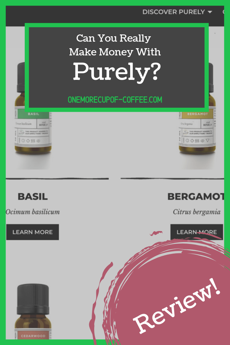 "screenshot of the purely website with title heading, ""can you really make money with purely?"""