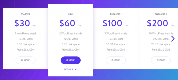 Kinsta offers a basic hosting plan for 30 dollars a month