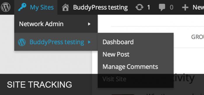 The drop-down menu of a BuddyPress testing version.