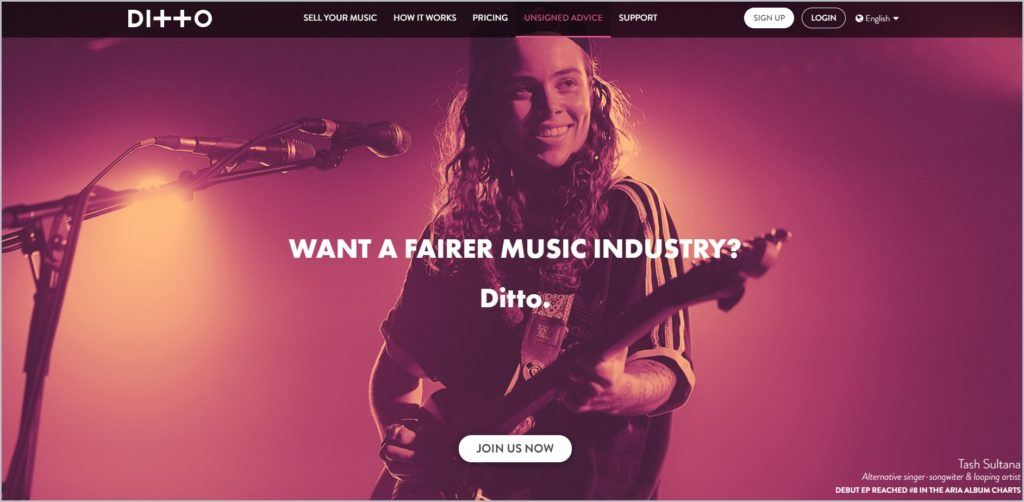 screenshot of Ditto web page