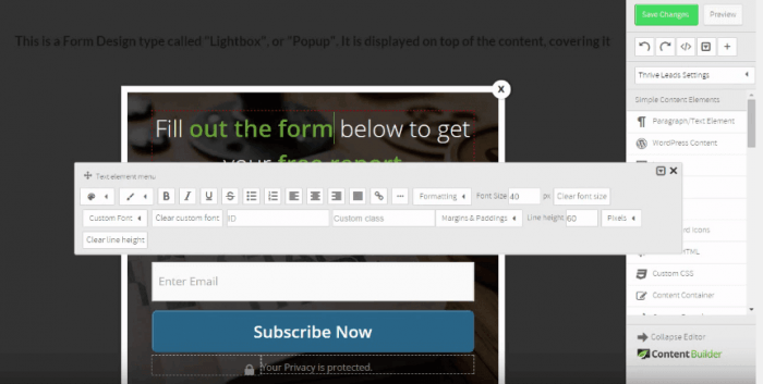 Opt-in form template being filled out on the Thrive Leads platform.