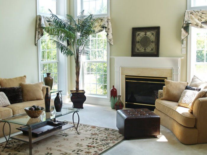 image of clean home interior with palm tree and cream colored furniture