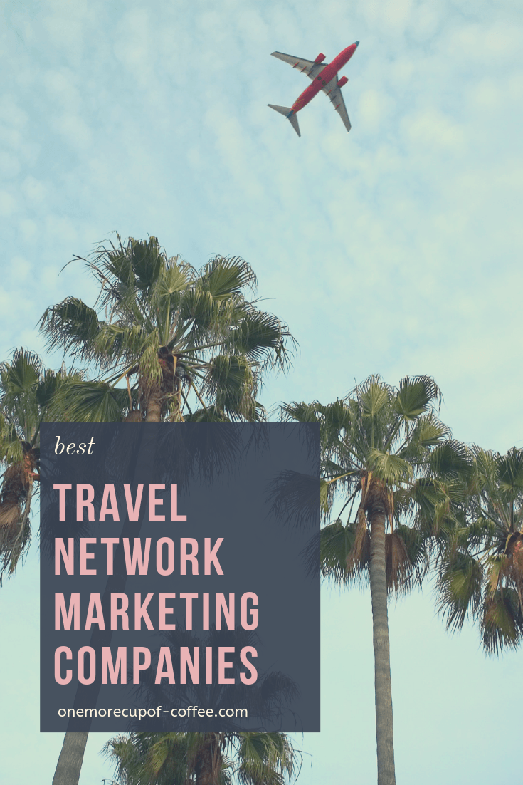"airplane flying above palm trees with the text ""best travel network marketing companies"""