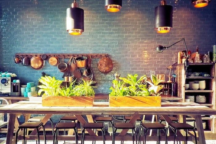 kitchen with track lighting and plants