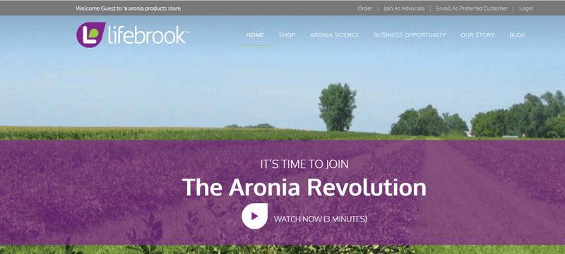 Lifebrook website screenshot showing a green field with a purple banner.
