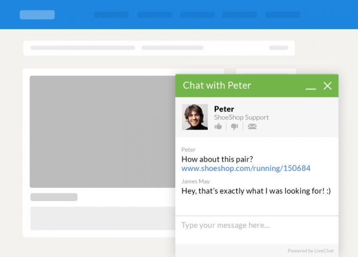 The chat window as it appears on the customer's side. It shows the agent's name, photo, and the company name.
