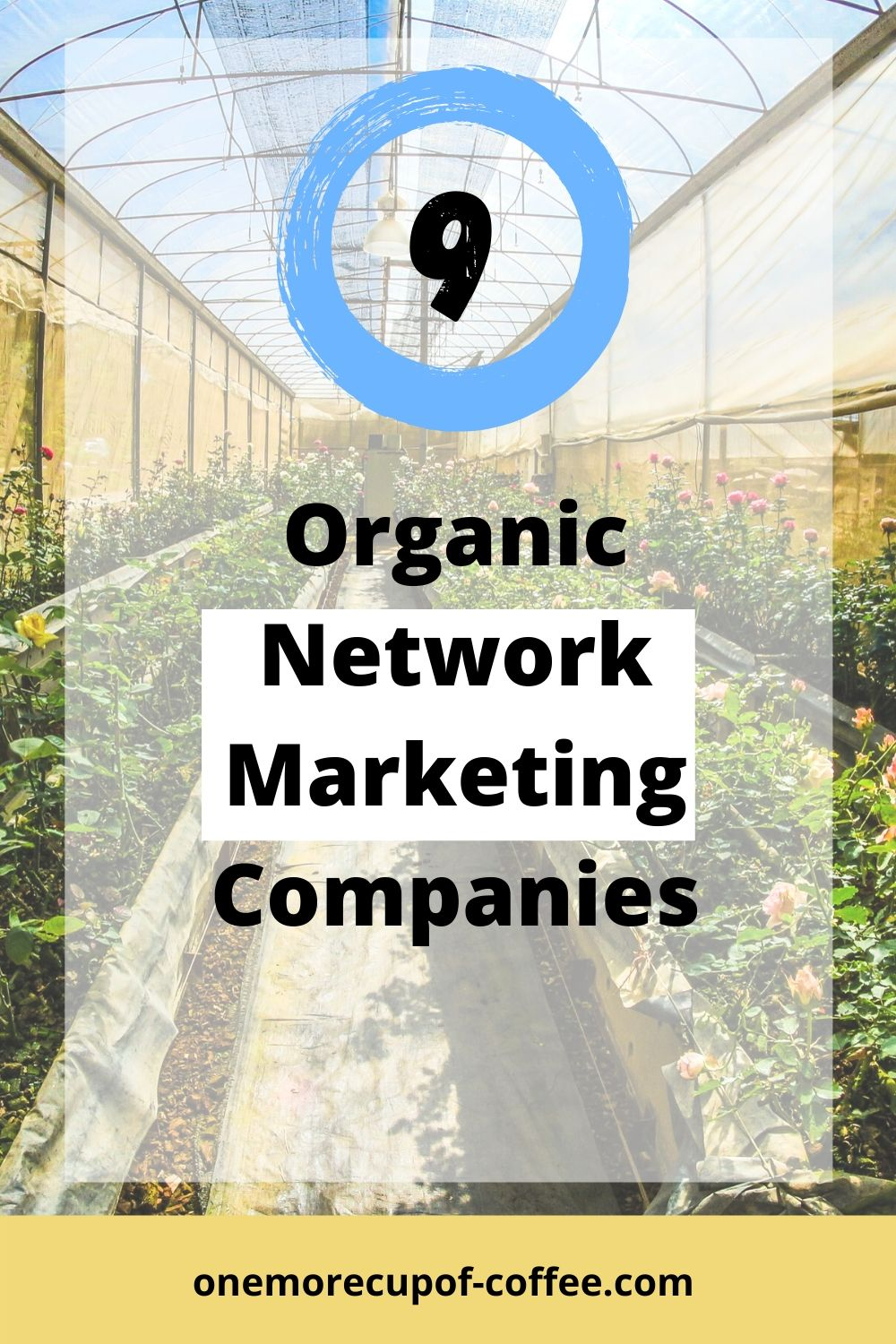 Greenhouse with plants to represent organic network marketing companies