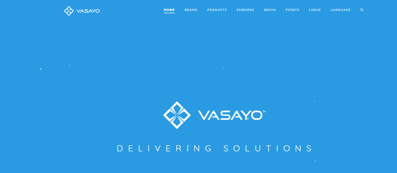 Vasayo website screenshot showing a light blue background and the words 'Vasayo Delivering Solutions'.