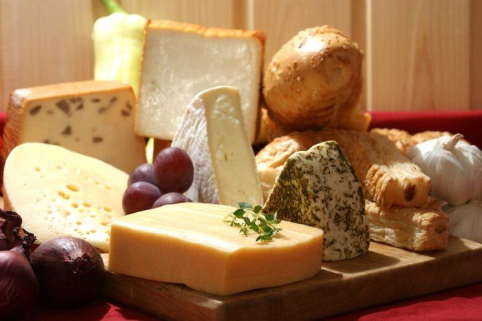 Various types of organic cheese representing the best Organic Food Affiliate Programs