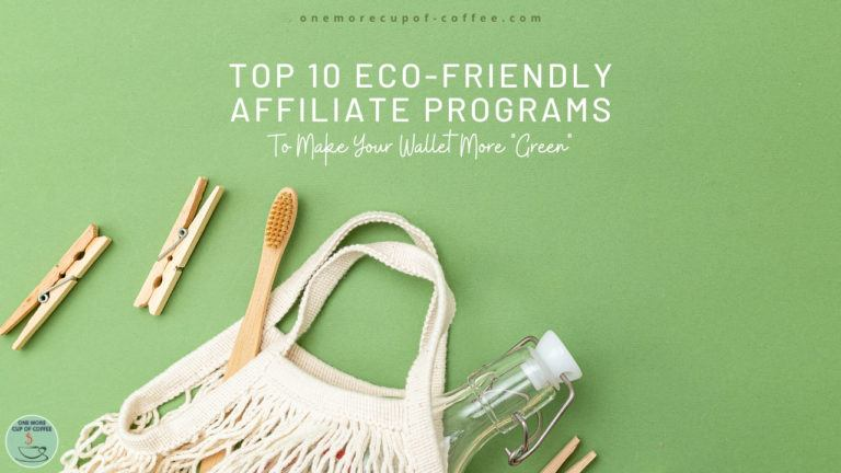 Top 10 Eco-friendly Affiliate Programs To Make Your Wallet More Green feature image